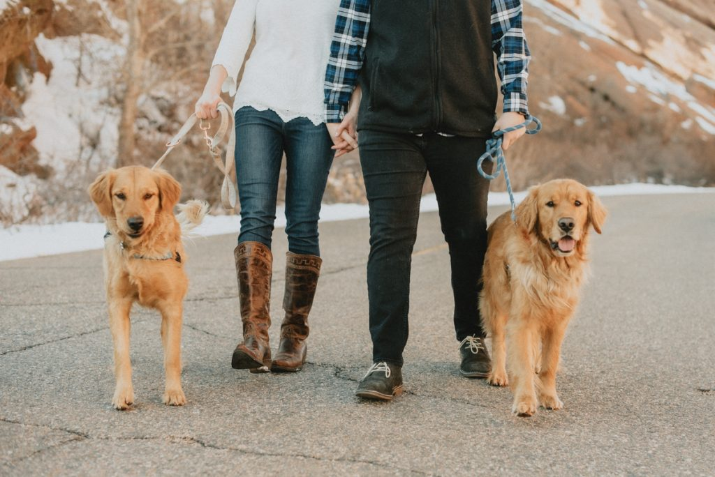 carrie beth and luke with their golden retrievers for their engagement session at red rock park in denver colorado